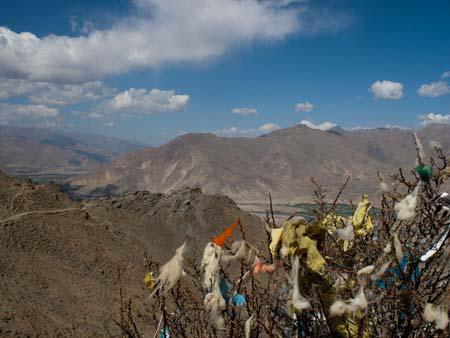 Tangled prayer flags and wool in the treys along the Kora